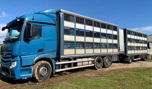 شاحنة نقل المواشي MERCEDES-BENZ Actros 2548 for pigs transport + العربات المقطورة شاحنة نقل المواشي