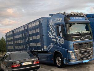 شاحنة نقل المواشي VOLVO TOP FH13 540-EURO 6 -4 level Jumbo PLAVAC